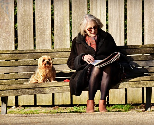 Pet Therapy Benefits For Seniors